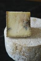 aged_cheese.jpg